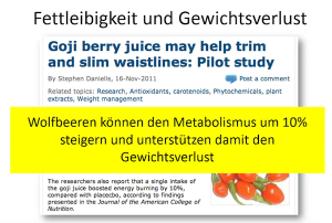 Goji Beeren Stoffwechsel Gewichtsreduktion